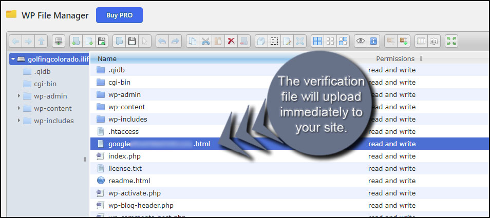 Upload Verification File