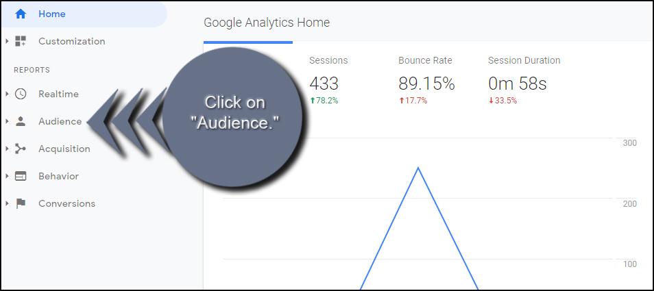 Analytics Audience