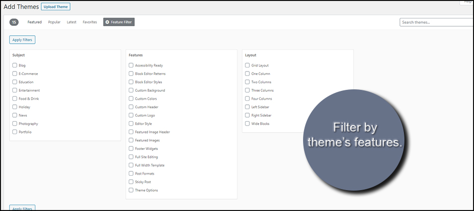 Theme Features Filter