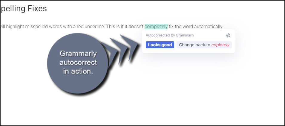 Grammarly Autocorrect