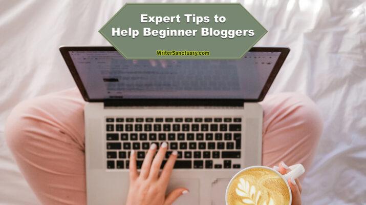 Blogging Begginer